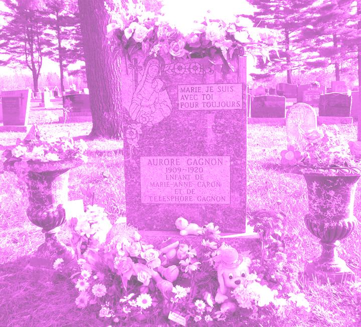 tombe aurore 3 rose lum